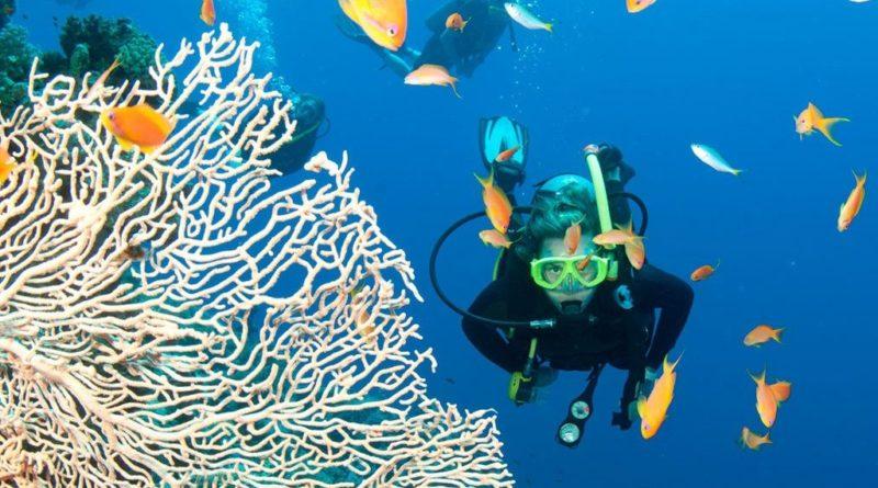 Coronavirus: slitta a novembre Eudishow, la fiera della subacquea